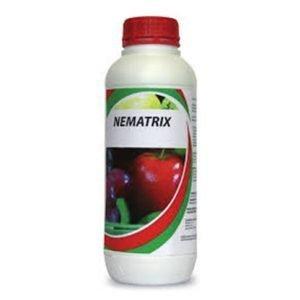 Nematrix